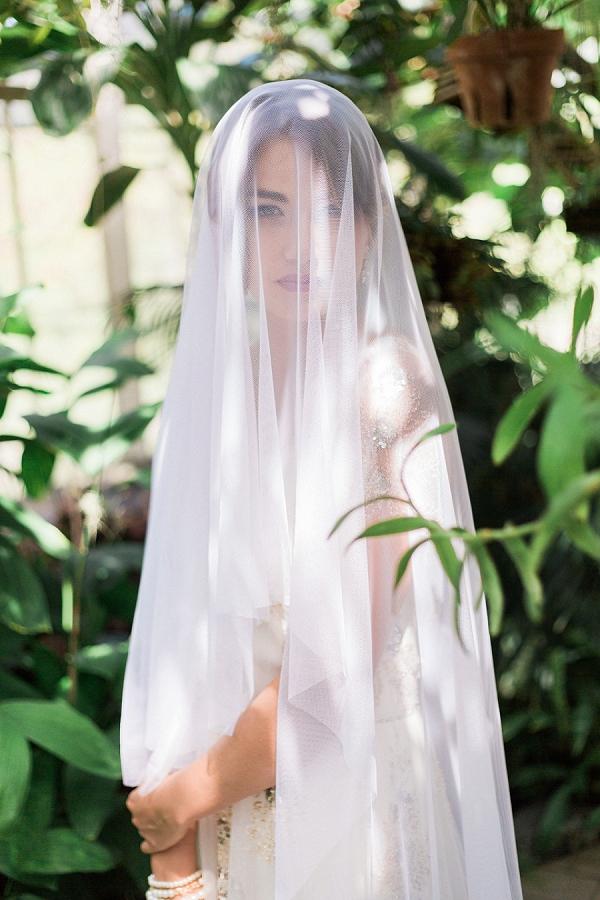 Bride with a Wedding Veil