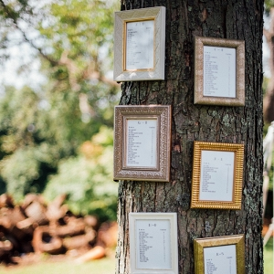 Framed Table Assignments Tree Seating Chart Festive DIY Backyard Wedding
