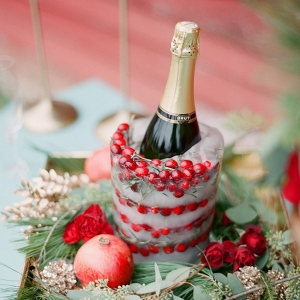 Cranberry Champagne Ice Bucket