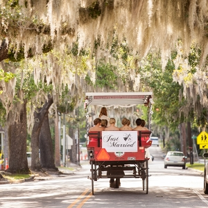 Charleston SC Horse Drawn Carriage