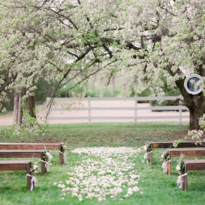 Outdoor Ceremony Under Blossoming Trees