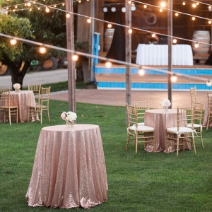 Outdoor Cocktail Hour with Blush Sequin Linens