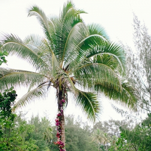 Palm Tree With Floral Garland