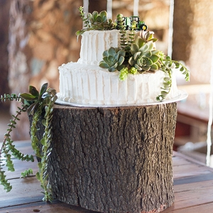 Cake with Succulent Decoration