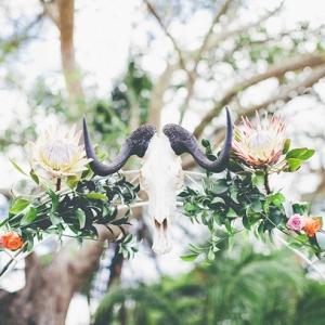 Safari Ceremony Arch