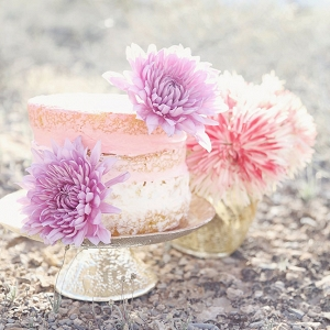Pale Pink Naked Cake In Las Vegas Desert Lissables Photography