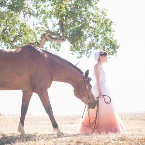 Ombré Wedding Dress | Photo by Phillip Van Nostrand