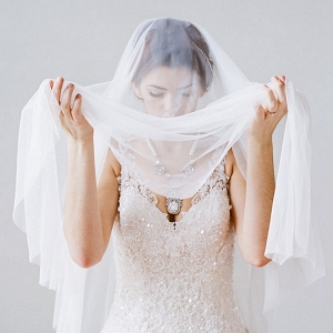 Cathedral Length Tulle Bridal Veil