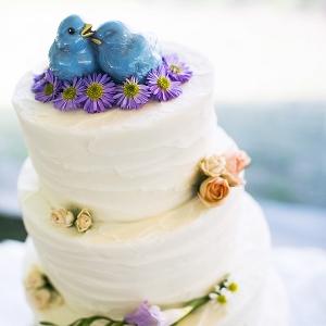 Bluebirds clay cake topper
