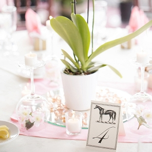 Vintage Horse Table Numbers