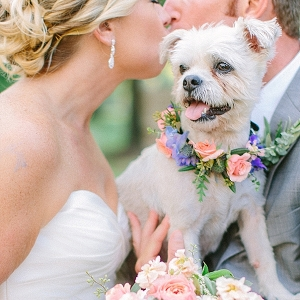 Wedding dog with flower collar