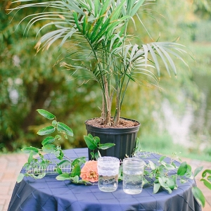 Palm tree watering ceremony