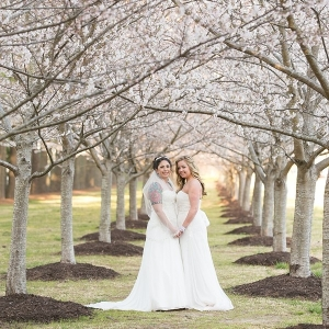 Two brides with cherry blossom trees