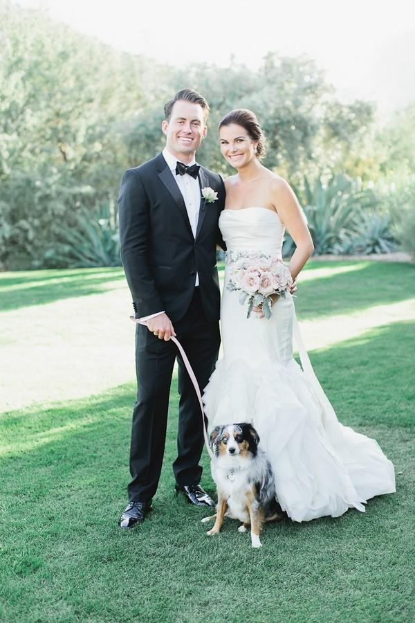 Dog Ring Bearer Classic Blush Arizona Wedding