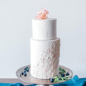 Blush painted wedding cake