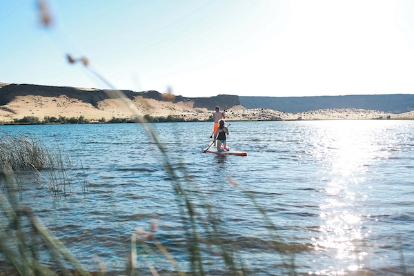 This Adventurous Paddle Board Engagement is Not for the Tame!