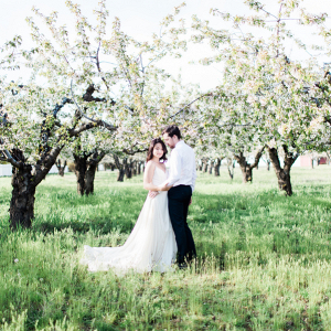 Cherry orchard engagement session