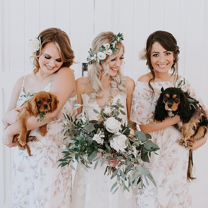 Bridesmaids with puppies