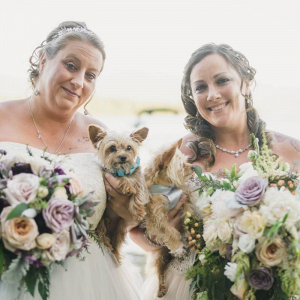 Two brides with their pups
