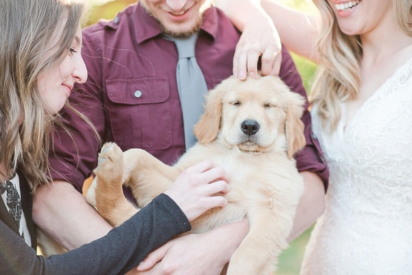 The Cutest Wedding Guest We've Ever Seen!