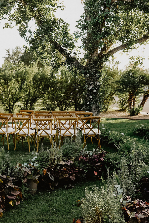Intimate Backyard Wedding in Phoenix, Arizona