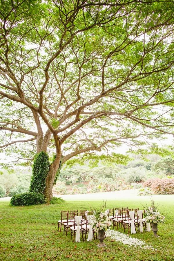 A Garden Wedding Ceremony