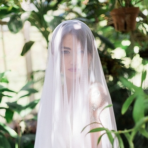 Bride with a Wedding Veil
