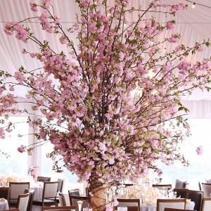 Oversized cherry blossom wedding centerpiece