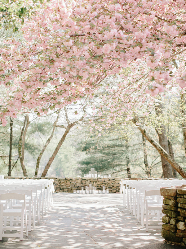 Beautiful ceremony setting under pink blossom trees