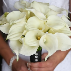 Calla Lily Bridal Bouquet / wedding design by Madeline's Weddings and Events / photo by Carrie Ekosky Photography