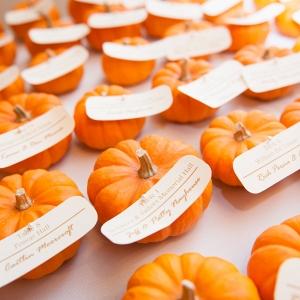 Orange Pumpkins Escort Cards Favors Fall Inspired Brunch Wedding