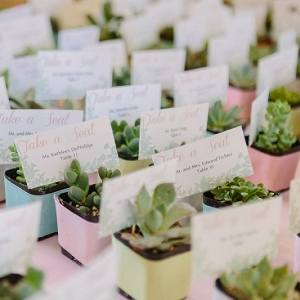 Miniature Potted Succulents Seating Cards Favors Shabby Chic Farm Wedding Pittsburgh