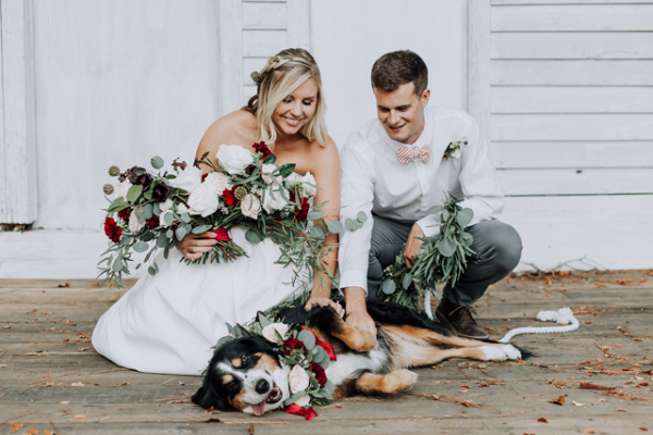 Shelter Dog Adoption Wedding