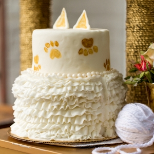 cat themed bridal shower from Burnett's Boards