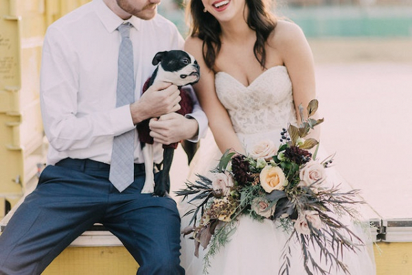Puppy at wedding