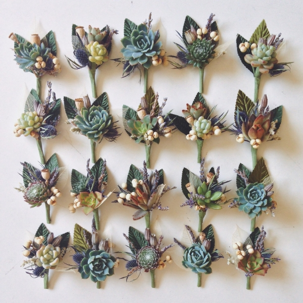 5 Assorted Succulent Boutonnieres