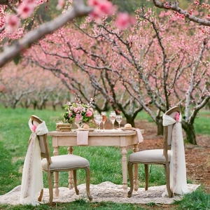 Spring Orchard Elopement Sweetheart Table