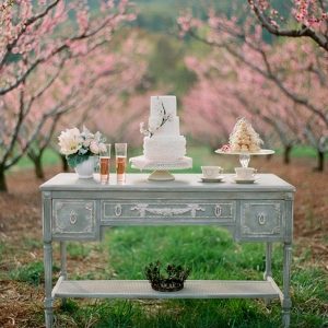 A delicious dessert table for a Spring Orchard Elopement