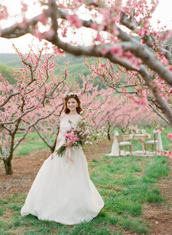 A Spring Bride in a Blossom-Filled Orchard