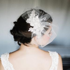 Lace & Crystal Birdcage Veil
