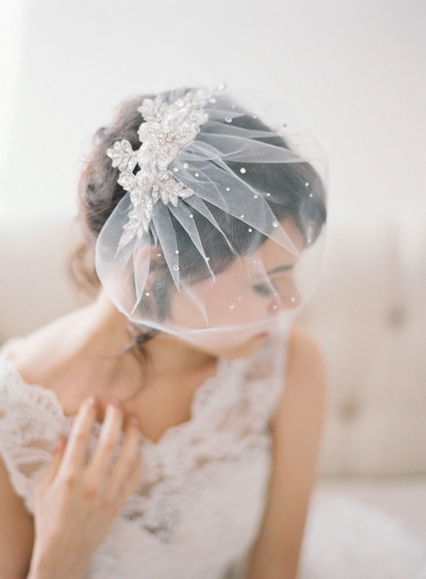 Crystal Lace Tulle Birdcage Veil by January Rose Bridal