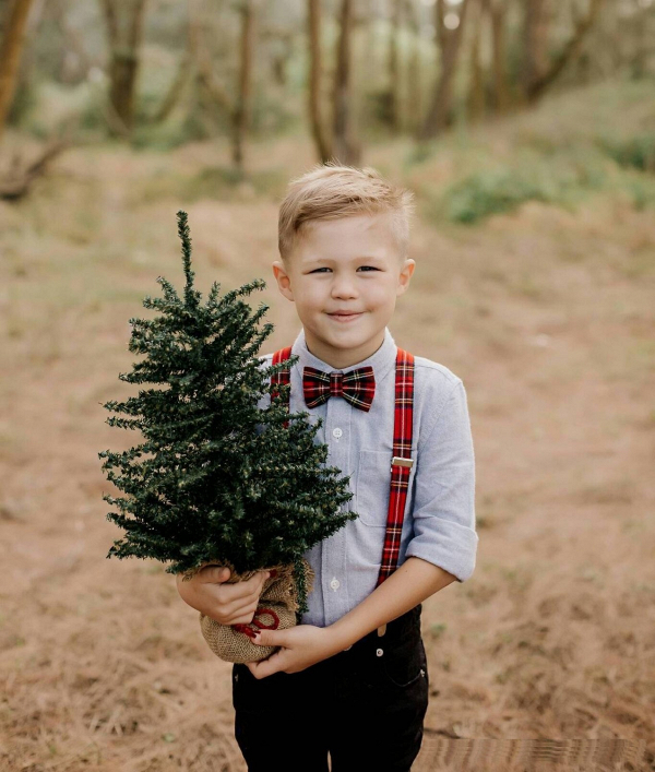 Christmas Wedding Ring Bearer