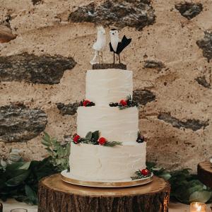 Wedding Cake with Bird Cake Topper
