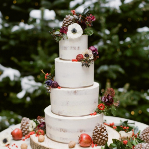 Elegant rustic winter wedding cake