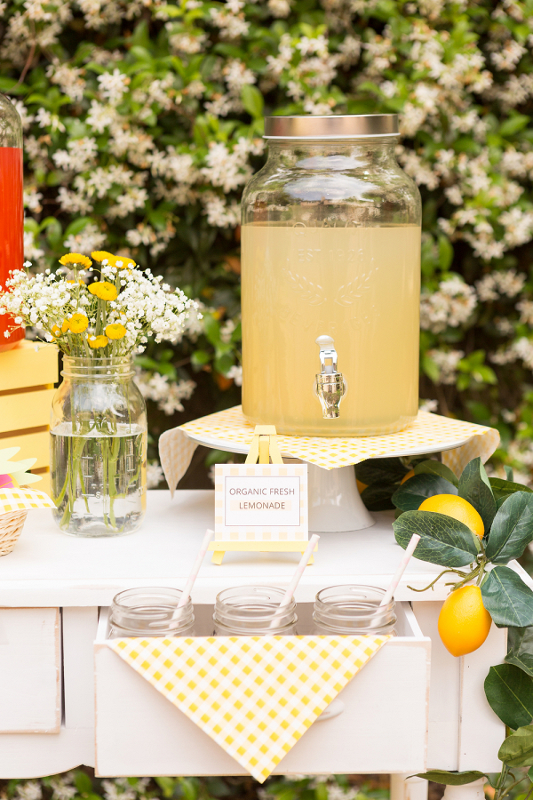 DIY Lemonade Bar