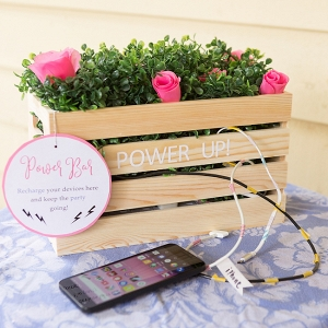 DIY Wedding Power Bar