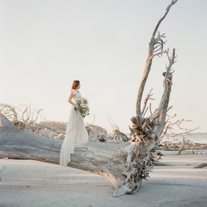 Bride On Driftwood Beach