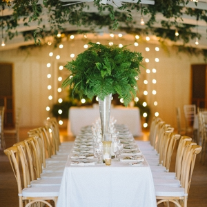 Large Fern Centerpiece