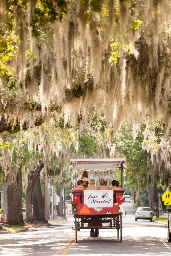 Charleston SC Horse Drawn Carriage