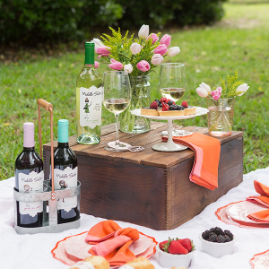 How To Style A Bridal Shower Picnic